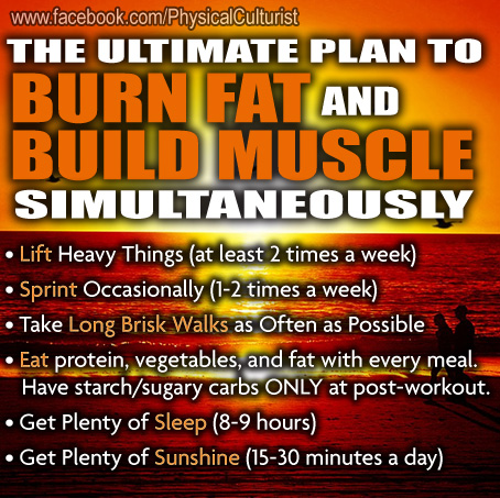 The Best Plan to Burn Fat and Build Muscle