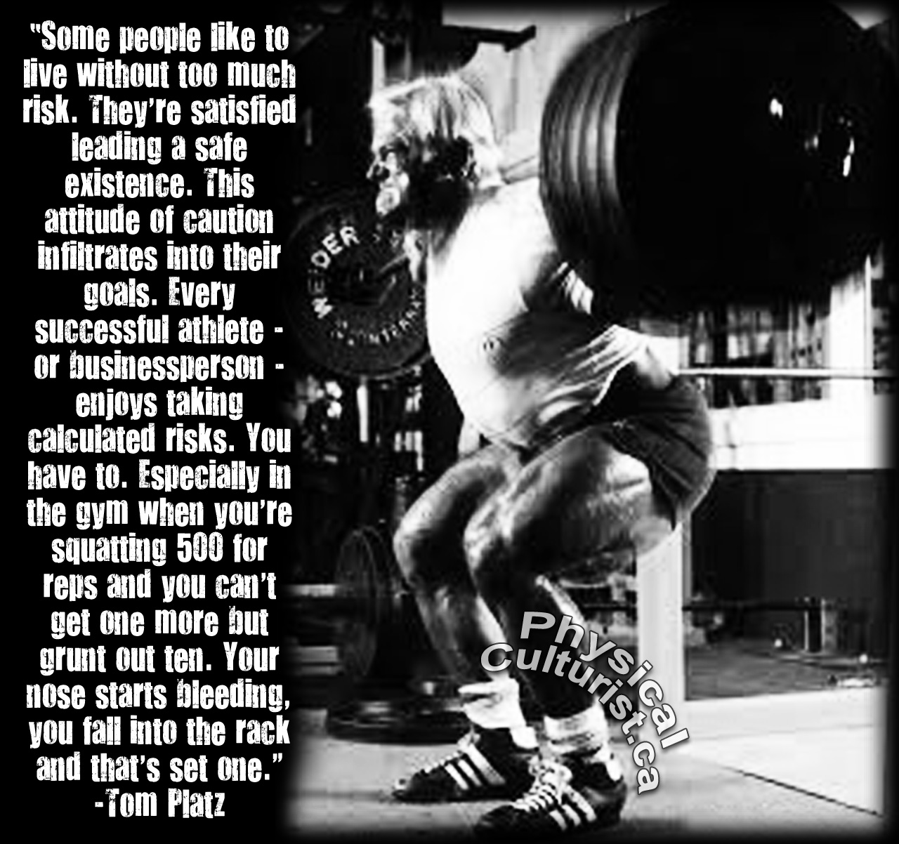 Exceptional Inspirational Quote By Tom Platz U2013 RISKS