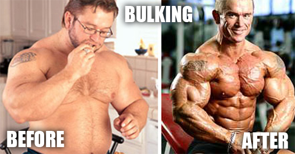 is bulking dead