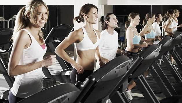 Why Cardio Alone Doesn't Cut Fat by elitefts elite fitness systems