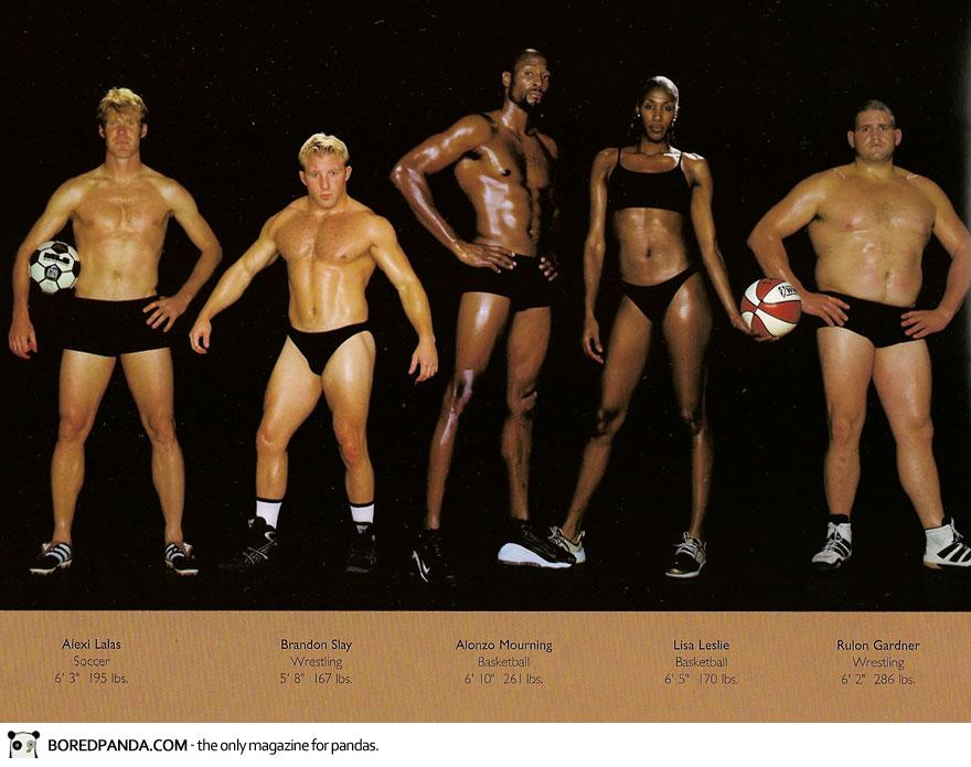 The Body Shapes Of The World's Best Athletes Compared Side By Side