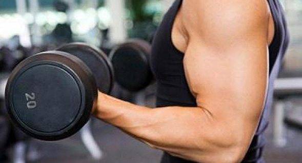 Strong muscles protect against cancer
